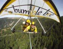 Hang Gliding above Interlaken