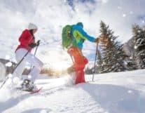 Snow Shoe tour winter activity Switzerland